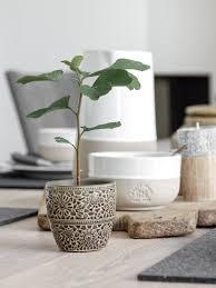 Esszimmer Tisch Deko Dekoration Natur Pur Auf Dem Esstisch Mxliving