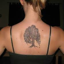 49 best willow images on willow tree tattoos
