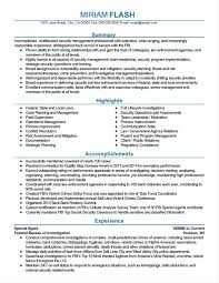 Sample Resumes Pdf Assessment Template Free Resume Templates Functional Format