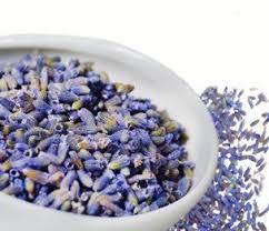 lavender tea delight blue lavender 4 oz
