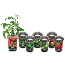 Indoor Herb Garden Kit Australia - seed kits available from bunnings warehouse