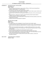 sle of resume travel team leader resume sles velvet