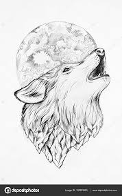 sketch of a wolf howling at the moon white background u2014 stock