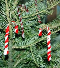 chenille candy cane childrens christmas crafts