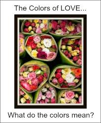 Flowers Colors Meanings - the color of love what does the color of a rose flower mean