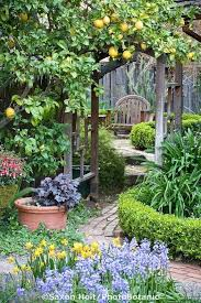 32 Cheap And Easy Backyard Ideas Cheap Diy Garden Ideas Cheap Landscaping Ideas For Backyard Homely