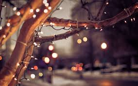 christmas lights pics from u2013 happy holidays
