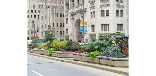 chicago native plants michigan avenue streetscape 20 years of magnificent mile blooms
