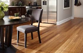 Harmonics Laminate Flooring Review Floor Cozy Interior Floor Design With Best Bamboo Flooring Costco