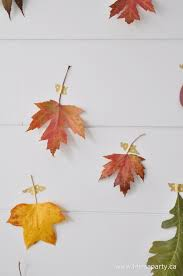How To Make A Backdrop How To Make A Fall Leaf Backdrop