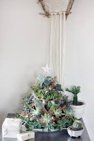 diy succulent tree sustainability in style