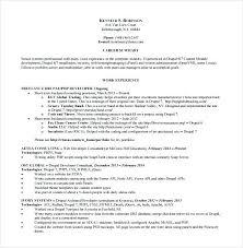 professional resume software software developer free resume samples blue sky resumes