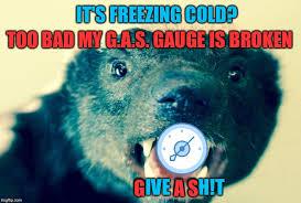 Honey Badger Meme Generator - honey badger don t care imgflip