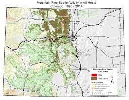 Colorado Usa Map by Forest Health Mountain Pine Beetle Rocky Mountain National Park