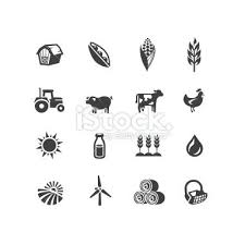 25 farm tattoo ideas wheat tattoo floral arm