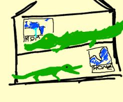 Interior Crocodile Alligator Crocodile Alligator