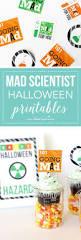 mad scientist halloween props 40 best voodoo doll images on pinterest voodoo dolls halloween
