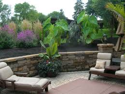 Design Your Own Backyard Create Your Own Backyard Tropical Retreat Mccoy Landscape Services