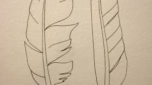 simple drawing of a feather wanna draw a feather how to draw a