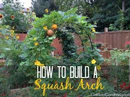 how to build a squash arch arch vegetable garden and gardens