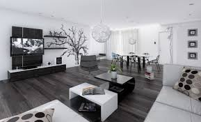 homes interior black and white interior design ideas pictures