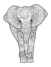 wildlife coloring book amazing animals for adults who color live your life in color