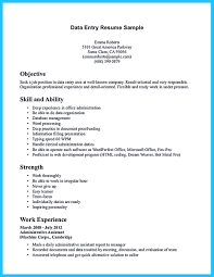 Business Analyst Profile Resume Data Entry Profile Resume Free Resume Example And Writing Download