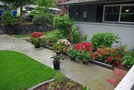 how we are turning a foreclosure yard into gardens of beauty