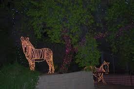 phoenix zoo lights military discount zoo turns into a musical light extravaganza arizona destinations