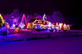 Zoo Lights Az by Best Christmas Lights You Can Get To Put Up Light Display Rain