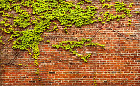 brick wall art shenra com