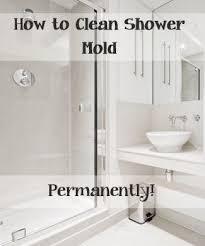 Get Rid Of Bathtub Stains Top Ways To Clean Your Shower Mold Shower Mold Clean Shower And