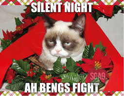 Original Grumpy Cat Meme - grumpy cat celebrates christmas in singapore
