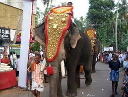 pin by m omnishambles on elephant ornaments