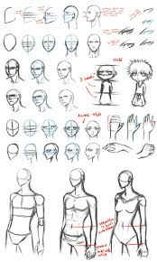 anime drawing lessons for beginners 25 best ideas about basic