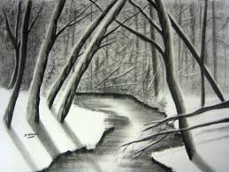 drawn forest charcoal drawing pencil and in color drawn forest
