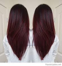 brown plum hair color amazing dark red violet plum hair color