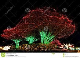 exterior christmas tree lights christmas lights decoration