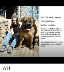 T Dog Meme - t dog for sale jethro free to good home excellent guard dog owner