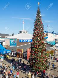 gallery of pier 39 christmas tree lighting fabulous homes