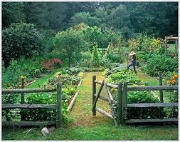 Design A Garden Layout Veg Garden Best Vegetable Garden Design Ideas On Allotment Design