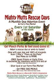 Bayshore Restaurant And Patio New Non Profit Dog Rescue Organization U0027mighty Mutts Rescue