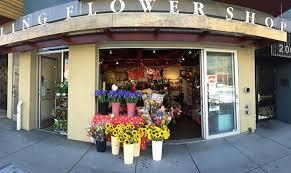 flower shop shop talk flower shop maker s row sock pop the coder
