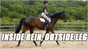 what does inside rein and outside leg do when riding a horse youtube