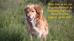 schöne hundesprüche 24 schöne hundesprüche zitate teil 2