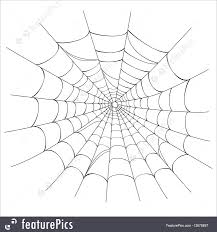 halloween spider web background wildlife spider web on white vector stock illustration i2676897