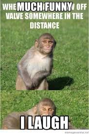 Monkey Meme Generator - much funny i laugh smiling monkey meme generator