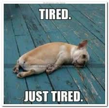 Tired Meme Face - meme face tired just tired meme chatrageous