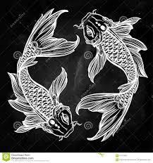 elegant koi carp fish illustration stock vector image 61107805