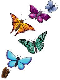 download butterfly design free png photo images and clipart